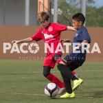 Paco Natera-94